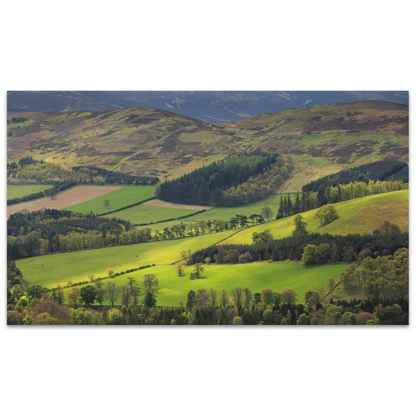 La Tweed Valley dans les Scottish Borders